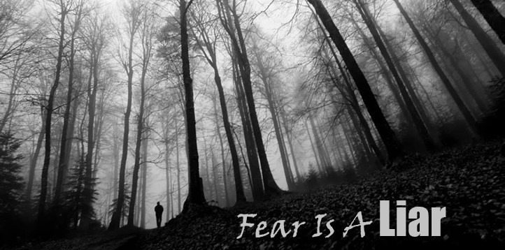 Tall Trees Fear